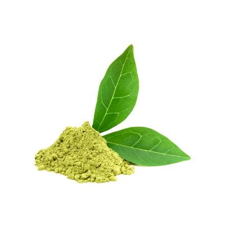 green-tea-extract-avesil-ingredient