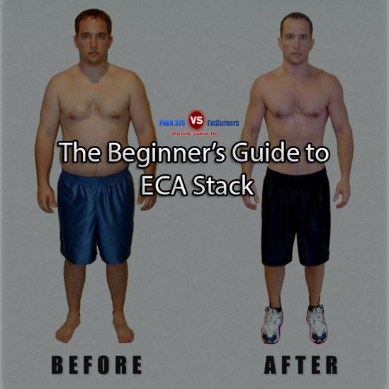 ECA Stack reviews beginners guide
