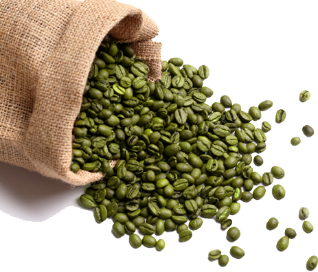 green coffee extract vs ph375