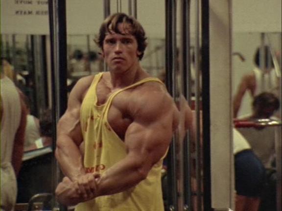 arnold-dbol-dianabol-muscle-bulking