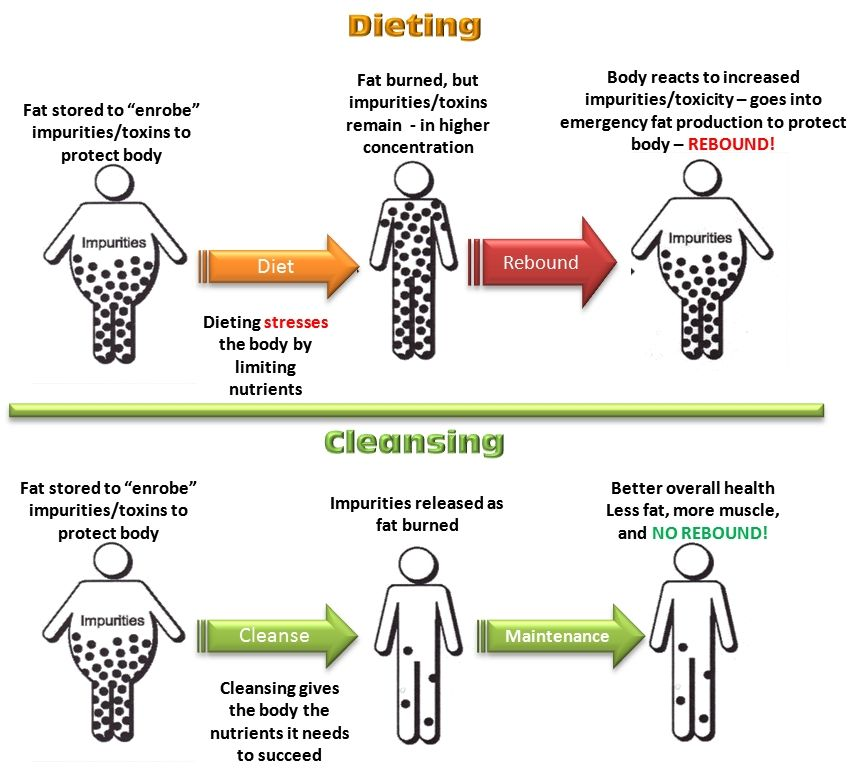 Toxins_Fat_cleansing