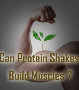 Can_Protein_shakes_Build-Muscle