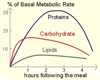 Increase metabolis rate
