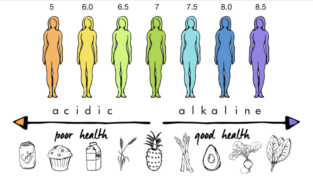 healthy alkaline pH state