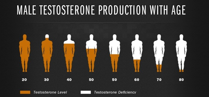 Testosterone-Level