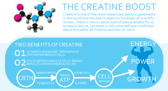 Creatine-How_IT_WORKS
