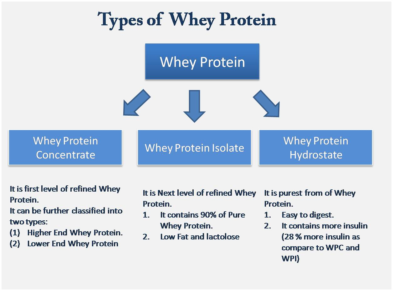 types-of-whey-protein