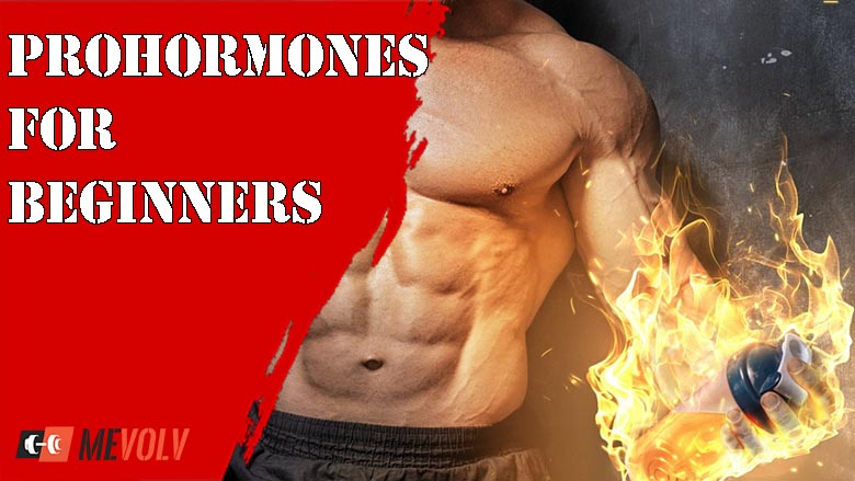Prohormones For Beginners