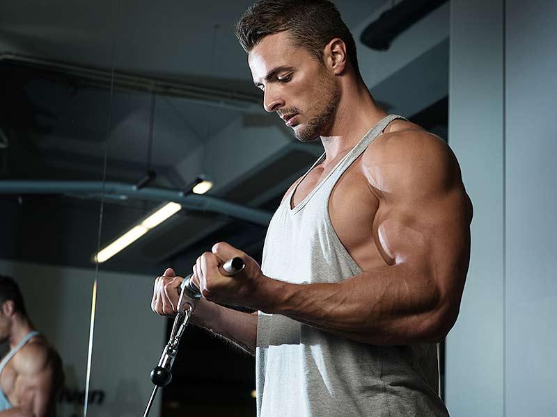 Vascular Body Biceps