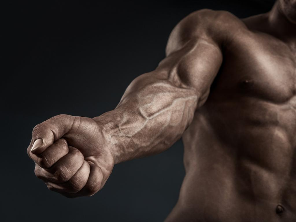 vascularity supplemets benefits on arms and body